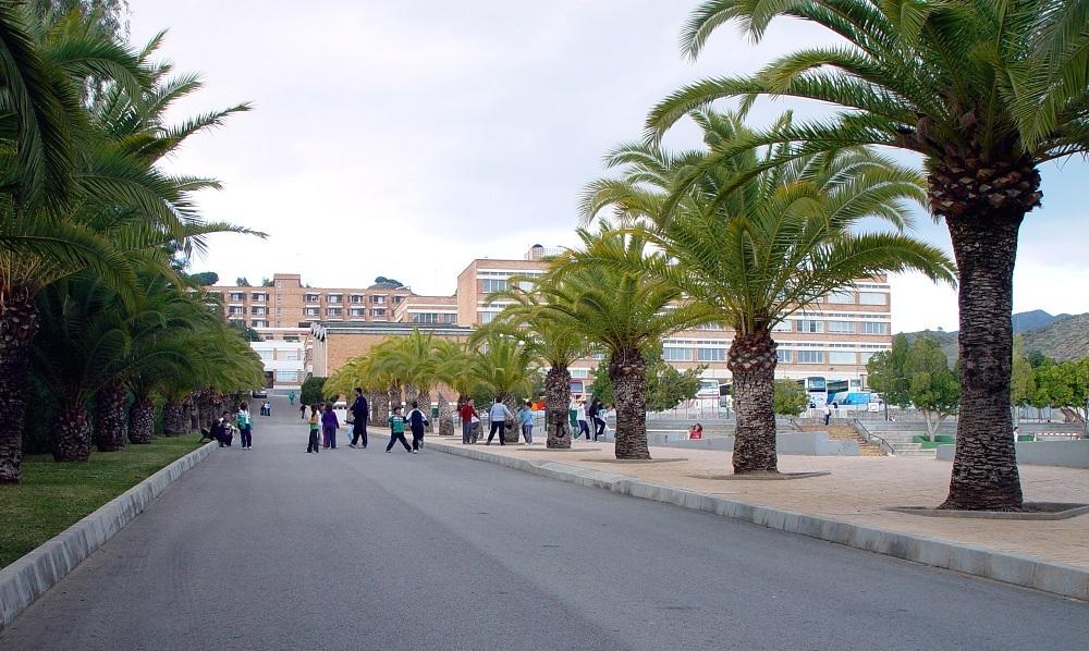 Colegio Los Olivos, Málaga