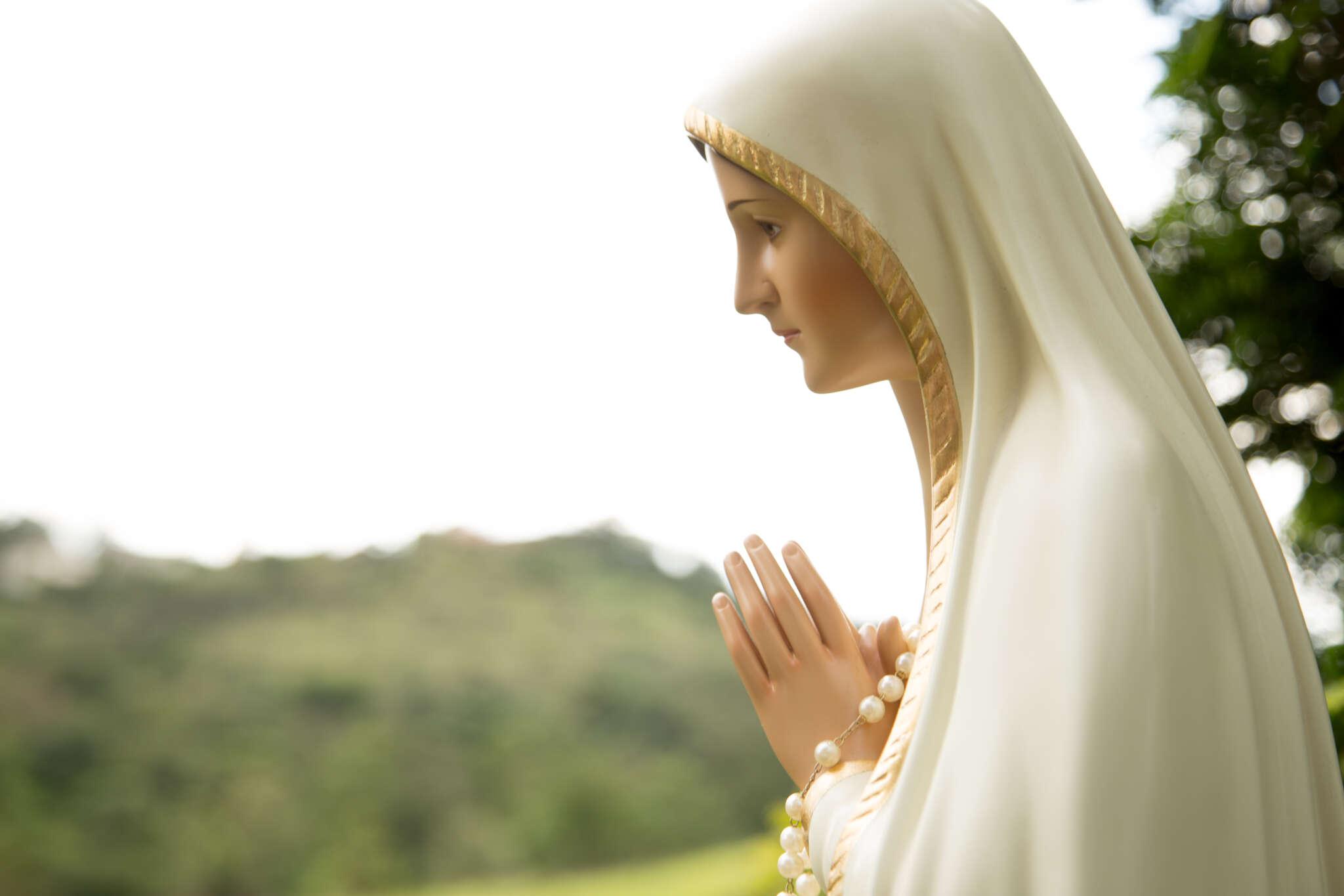 Los agustinos se unen a la oración convocada por la Conferencia Episcopal para rezar por los religiosos fallecidos por Covid-19, el 21 de noviembre.