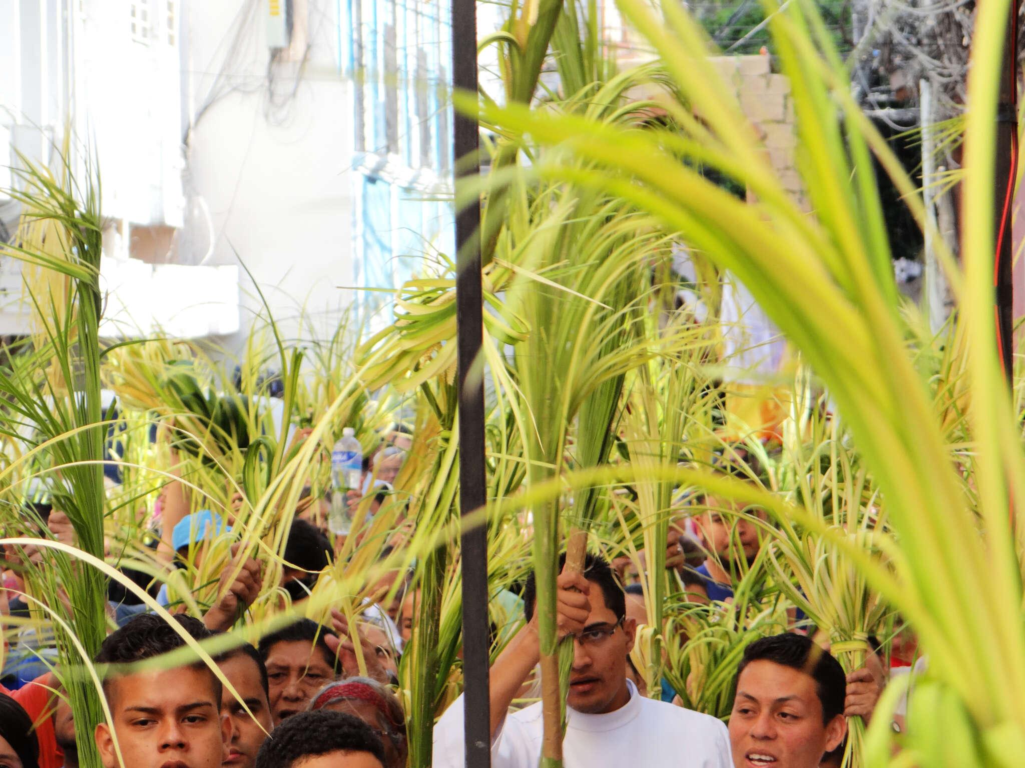 El Domingo de Ramos los cristianos conmemoramos la entrada de Jesús en Jerusalén y con ello comienza la celebración de la Semana Santa.