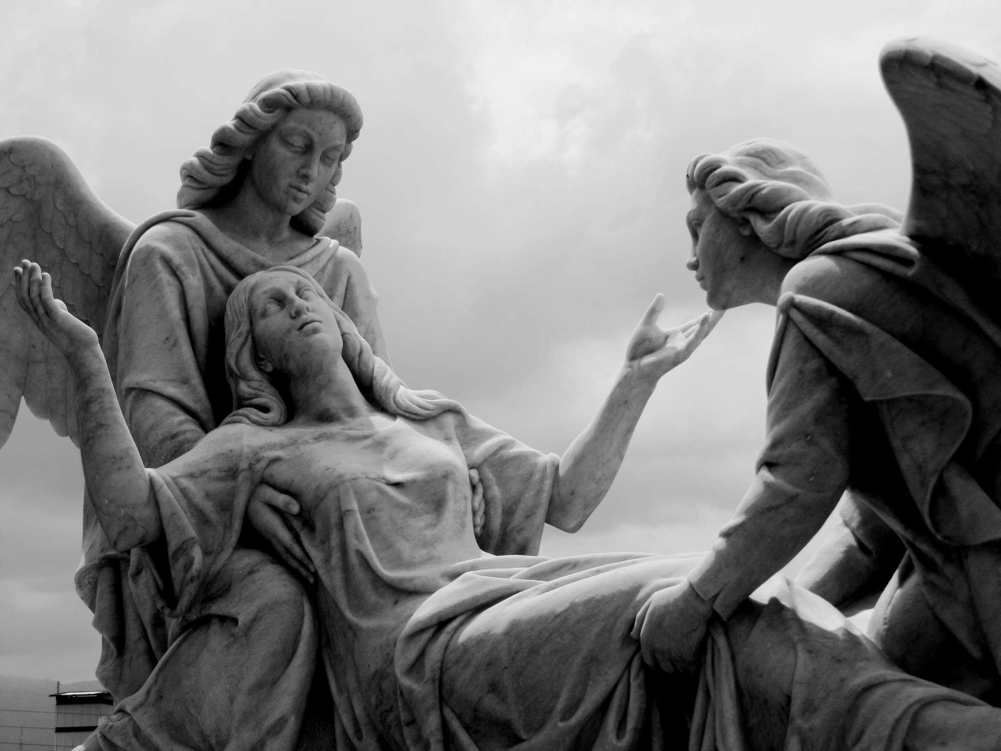 Celebrar que María es asunta al cielo es actualizar la intervención de Dios en nuestra historia, a través de María.